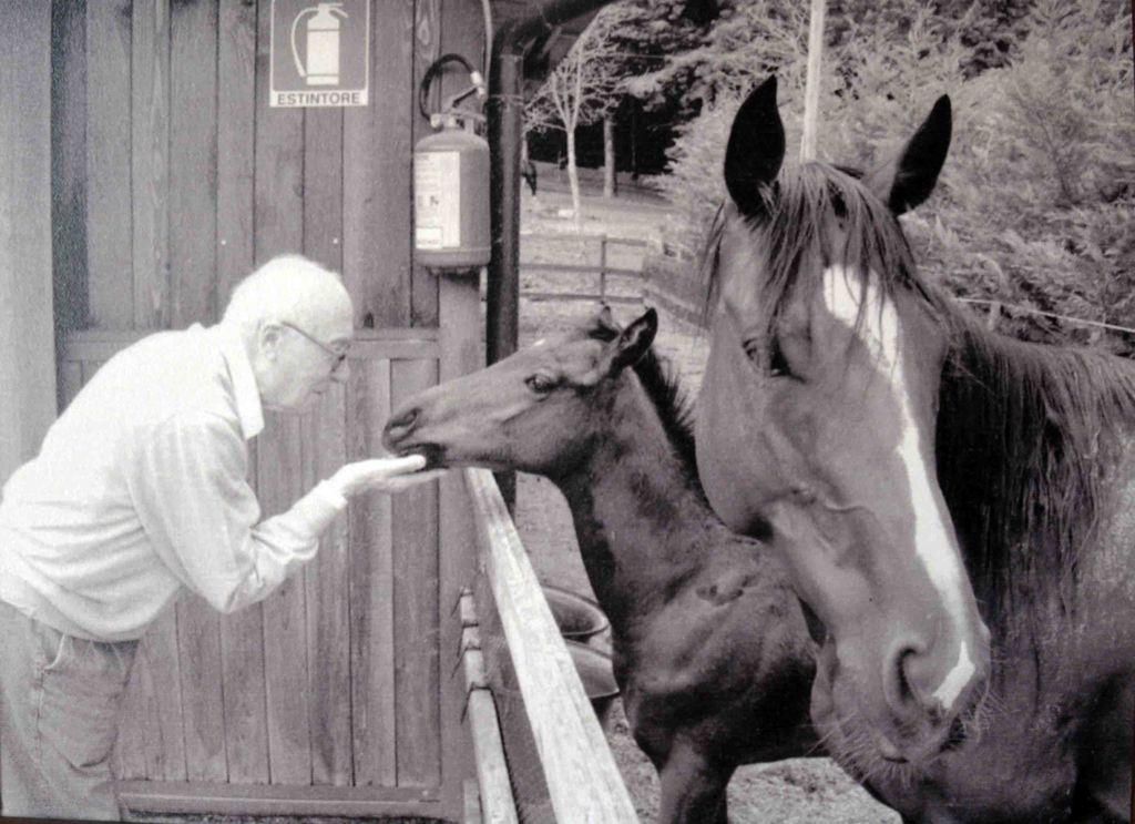 Lutto - Se ne è andato alla soglia di 94 anni il cavalier Riccardo Gualdani