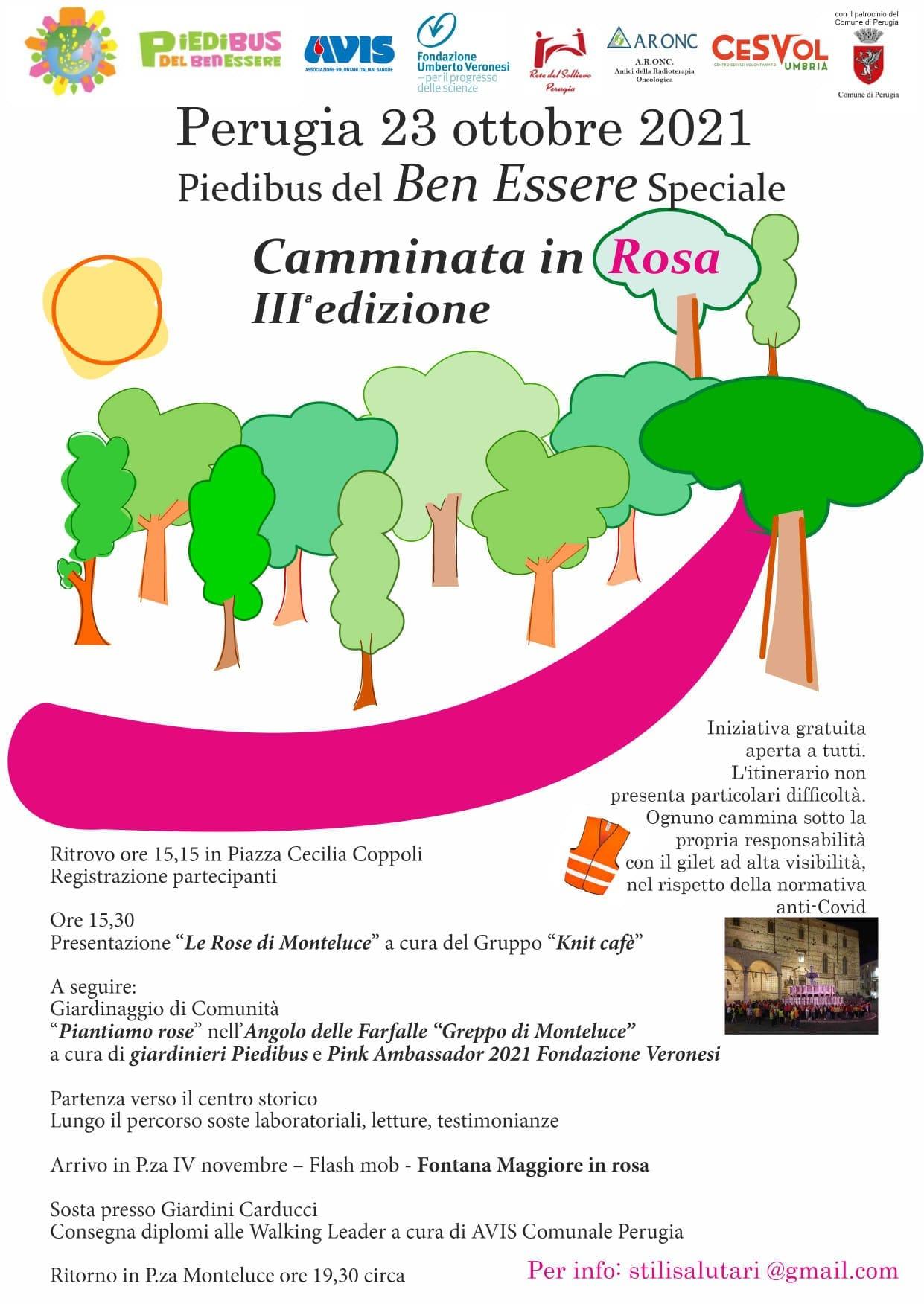 """A Perugia si """"Cammina in Rosa"""""""